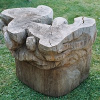 17. Tree stump Table sculpture in oak